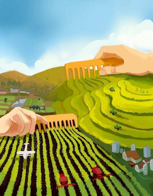 """家庭农场等""""并非主流农业社区的地方""""成为讨论主角"""