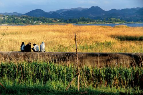 黔西北不仅仅实现了人的脱贫,也实现了生态的修复,这是一个真实的复乐园故事。图为几位少年在威宁草海边无边的芦苇荡中享受阳光。.png
